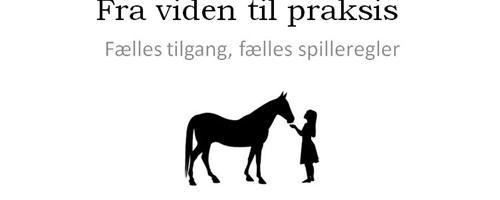 Hesten i centrum og Lydsignaler