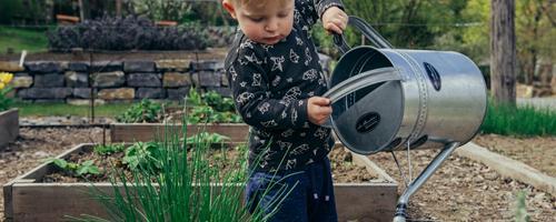 Sådan bliver din have forårsklar