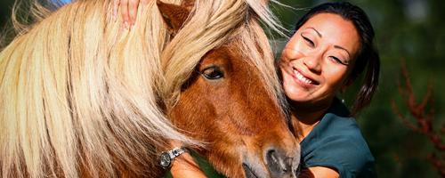 Hvis din hest ikke er din bedste ven-hvad er den så?