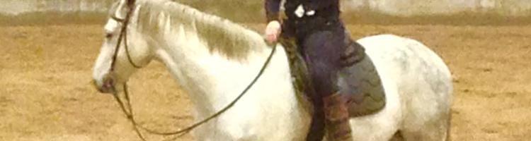 Min hest stå ikke stille, når jeg sidder op