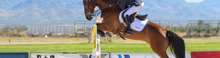 Lær at spille på hestevæddeløb
