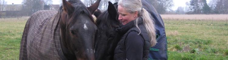 Opnå respekt og tillid mellem dig og din hest