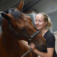 Din Hestemassør v/Anne-Katrine Nielsen