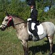 kikki (tidligere pony)
