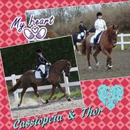 ..-** Cassiopeia Star & Camilla **-. K