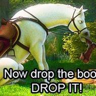 ¤ Equestrian-ish ¤