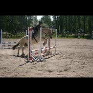 Ponyerne<3