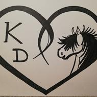 My Horse Life