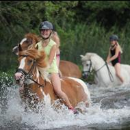 Lucca & Ponyerne