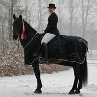 S. Birkmose Dressage