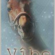 » Vibe & Lærke ¦ Kiwi & Bine «
