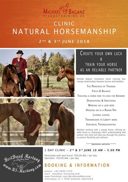 Natural Horsemanship Clinic med Michael Baganz