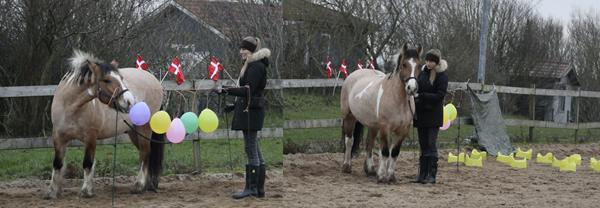 Dækken til bred hest