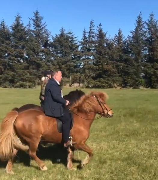 Klimavenlig transport, Løkke til hest?