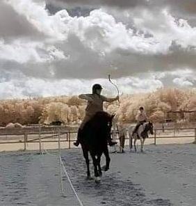Intro til bueskydning til hest Sjælland