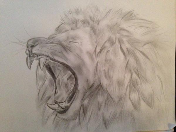 løve tegning