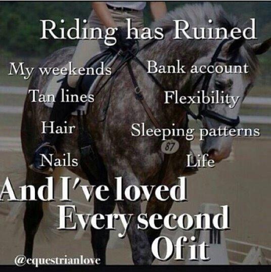heste citater Heste Citater   Skrevet af Marie C heste citater