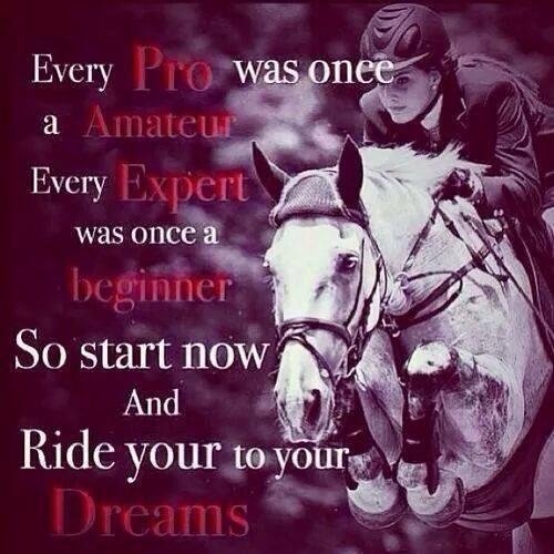 citater om heste gå i stykker