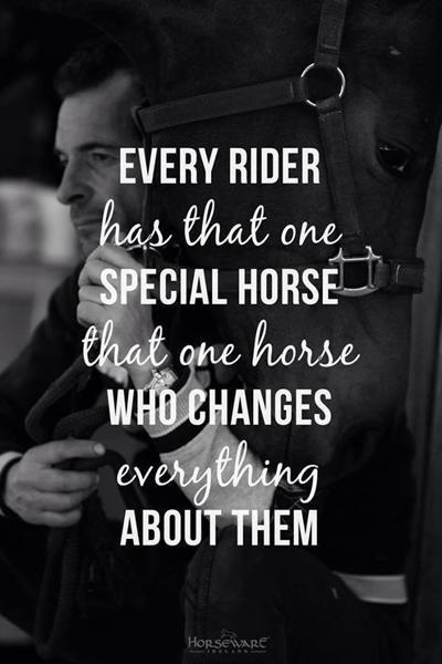 citater om heste Citater om heste/ridning..   Skrevet af Anna P og ismulen citater om heste