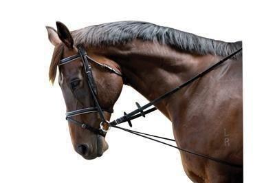 Hvordan tager man en elastik chabon på en Hest? - Skrevet af Julia & Indurain Delight