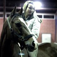 Anden særlig race Ponylands All Star † 06.12.2011
