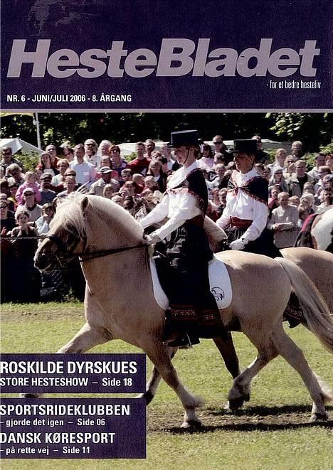 Fjordhest Idon Busklund SOLGT - Idon på FORSIDEN af heste-bladet. Nr. 6 Juni/Juli 2006 billede 13