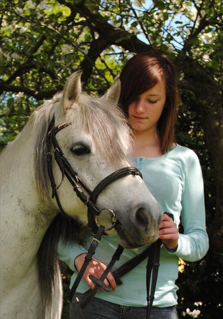 Anden særlig race |  Beauty - velkommen til Beauty´s profil.(:´  håber i vil bedømme og kommenter min dejlige pony.(´: billede 1