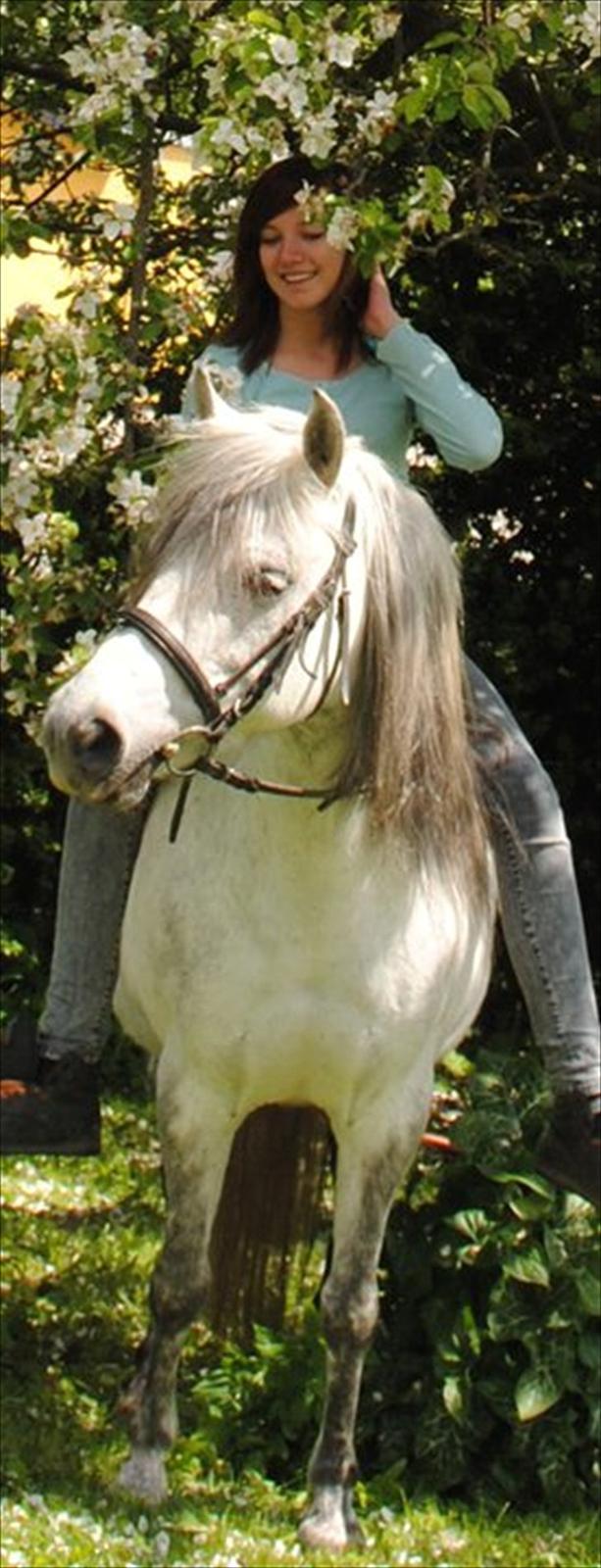 Anden særlig race |  Beauty - Beauty og jeg i sommers 2010.(´: dejlig dag med hende!!.(: billede 3