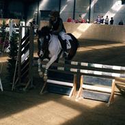 Anden særlig race Prins (B-pony) MY LIFE <3 R.I.P :'(