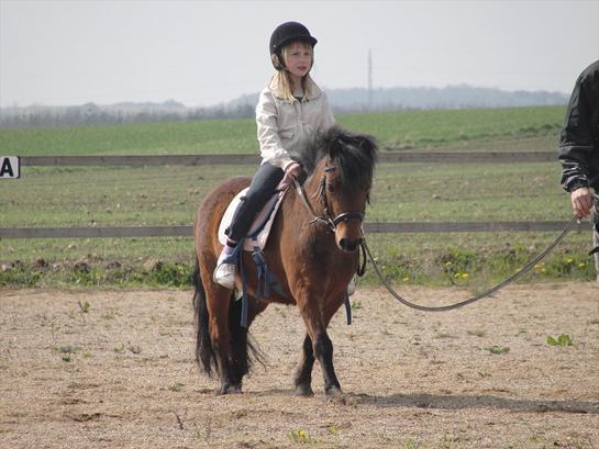 Anden særlig race - Os To Forever Smukke Søde osv. Pony!<3 - - Øver lidt dressur med Prinsessen! <3