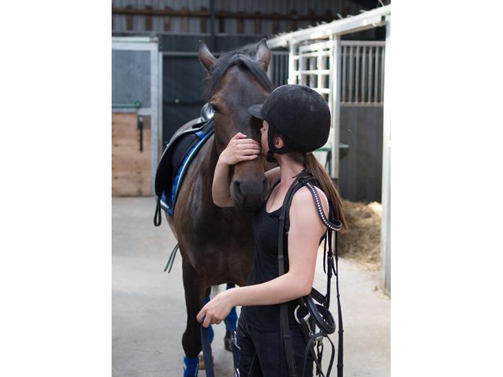 New Forest Marrondales True Love - Lidt hygge på staldgangen. Juli 2013 <3