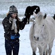 Anden særlig race Pasqual -My Unicorn-
