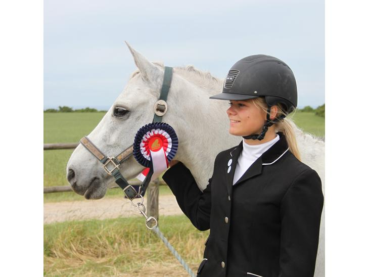 Welsh Pony (sec B) Bakkegaardens Oliver