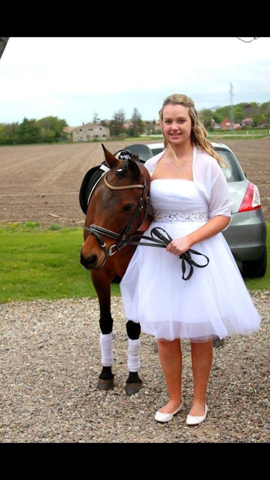 Pinto Vestergårdens Jasmin  <3 - jasse den dejlige pony du betyder så meget billede 4