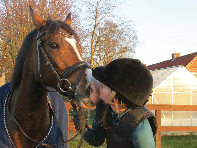 DSP May Dream - Hvor jeg dog elsker den pony! billede 7