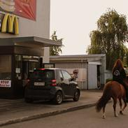 Anden særlig race Ponyen Pixie