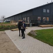 Tysk Sportspony Etna