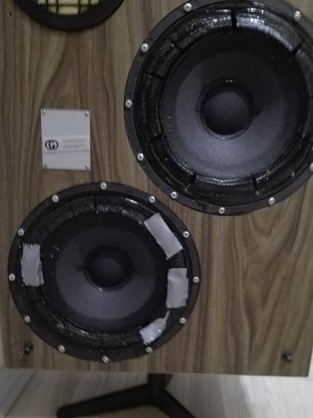 Huller i bassen på gammel b&o højtaler