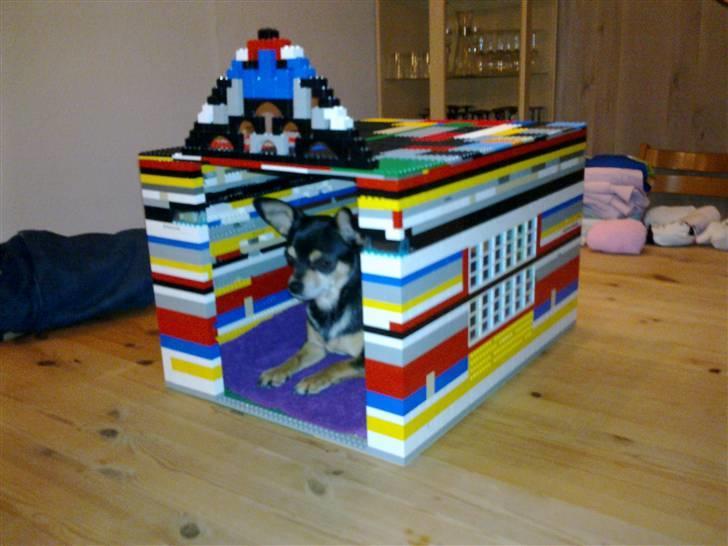 Tilbage til lego hundehus hjemmelavet d