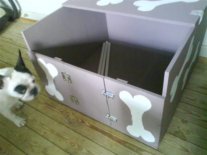 fødekasse til hund