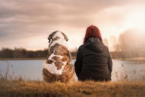 Kom i form med din hund