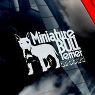 Kennel Amazing Miniz