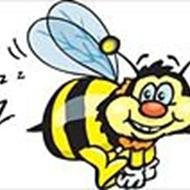 Bumble bee .
