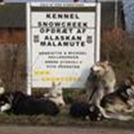 Kennel Snowcreek *