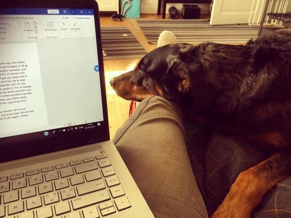 Den bedste skrivepartner
