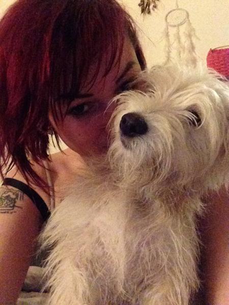 At lære en hapsende hund med sin egen mening frivillig håndtering - råd, videoer eller artikler der kan anbefales?