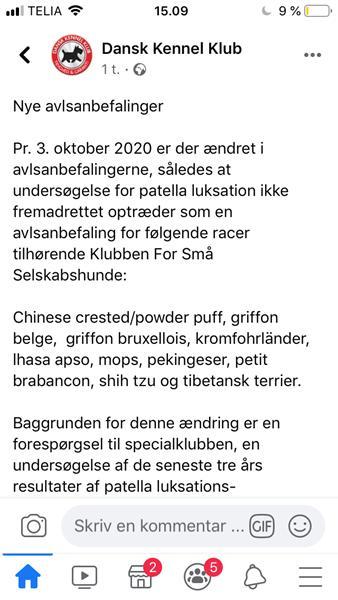 Nye avlsanbefalinger DKK