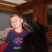 Blanding af racer Himmelhund Milo min Milo <3