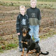 Rottweiler Freja  *Dec 2005*