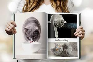 Hyld dit kæledyr med en fotobog fra CEWE